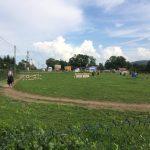 konie Łabowa Nowy Sącz